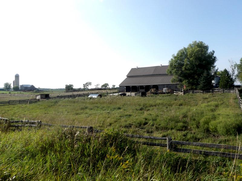 Alverstoke Farm